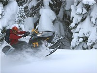 DJ'S Snowmobile Adventures - Winter Attraction in Mammoth Lakes