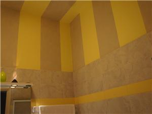 Designer Painted Walls