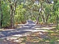 Backend Country Trail - Tours in Orange Beach