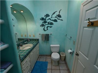 The guest bathroom