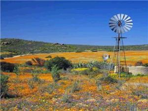 Northern Cape Properties