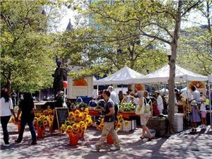 Copley Farmers Market is a 16 minute walk