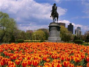 Boston Common is a 22 minute walk