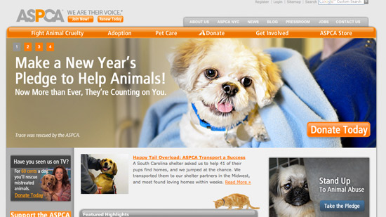 ASPCA Website Design and Marketing