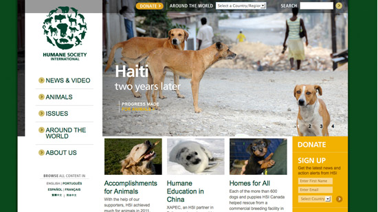 Humane Society Website Marketing