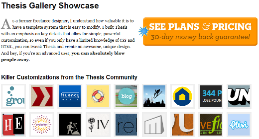 Get smart with the thesis wordpress theme from diythemes