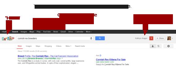 Google shows consistency