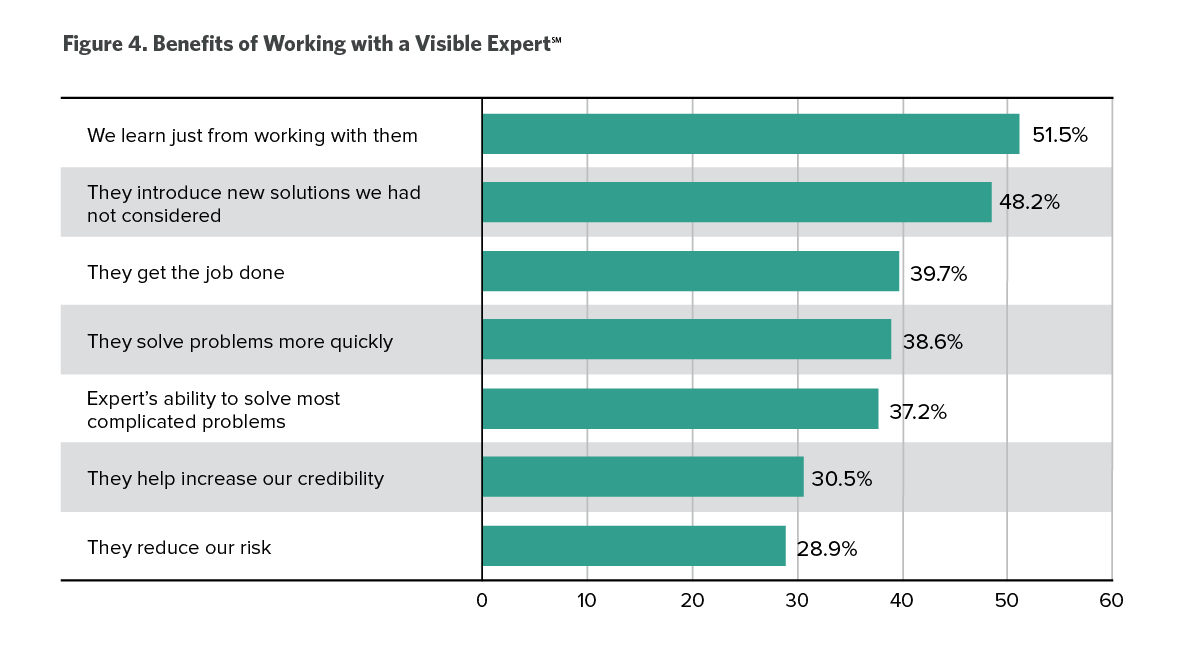 benefits of working with visible expert