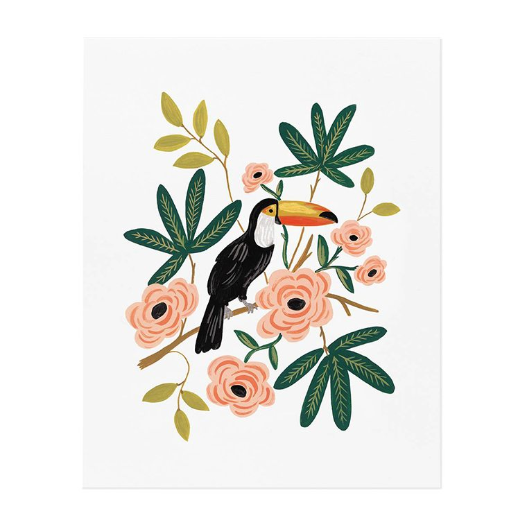toucan-art-print-l-shopceladon