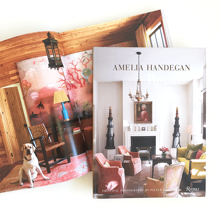 amelia-handegan-book-shopceladon