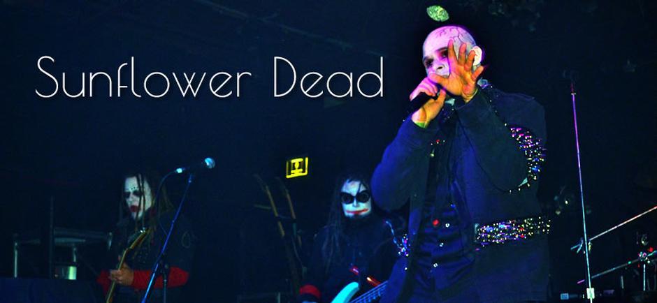 Sunflower Dead - It's Time To Get Weird (Live)