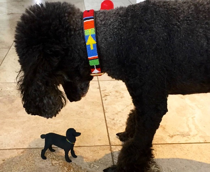 Black dog looking at miniature 3D version of itself