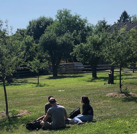 Three students sitting outside in the grass in an orchard, chatting.