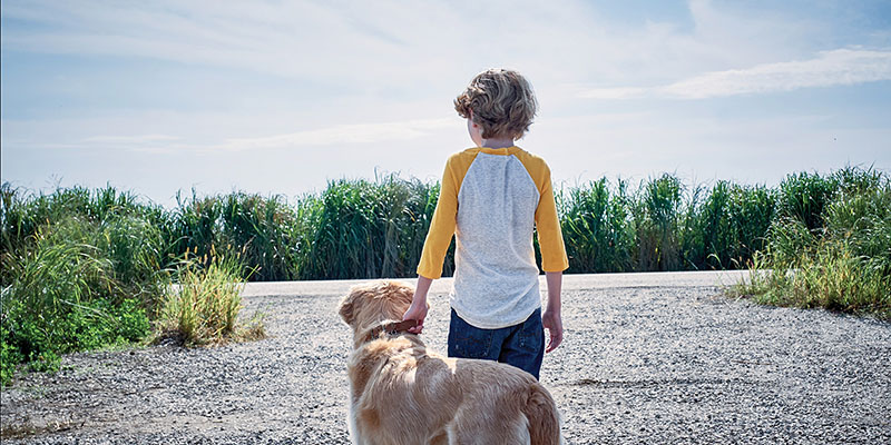 The back of a boy who, standing beside a dog, holding it by the collar