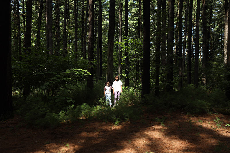 Two girls holding hands standing amongst trees in a forest.