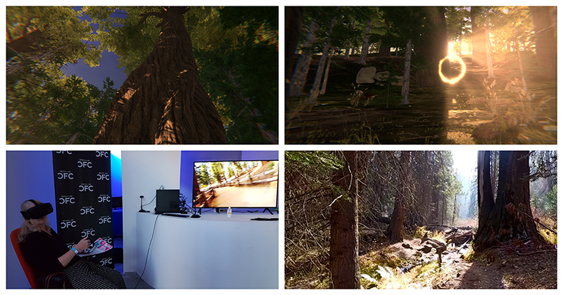 A collage of four images: three images of sequoia tree ecosystems, one image of a woman wearing a VR headset