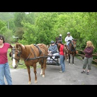 Camp K Horses for Heroes Trailride and Salute