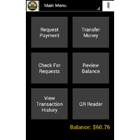 MintChip Peer-to-Peer Transaction System