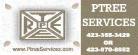 PTREE Services