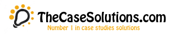 TheCaseSolutions Support