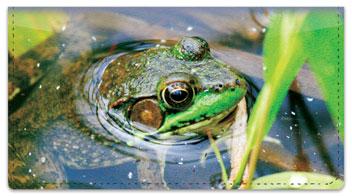Reptile & Amphibian Checkbook Cover