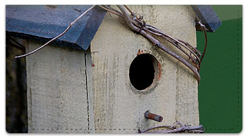 Wooden Birdhouse Checkbook Cover
