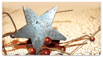 Rustic Star Checkbook Cover