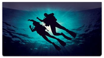 Scuba Diving Checkbook Cover