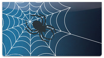 Scary Spider Checkbook Cover