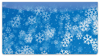 Holiday Snowflake Checkbook Cover