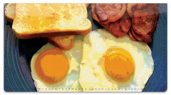 Country Breakfast Checkbook Cover