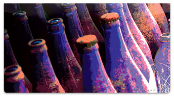 Soda Bottle Checkbook Cover