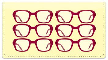 Eyeglass Checkbook Cover