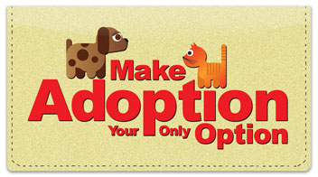 Animal Adoption Checkbook Cover