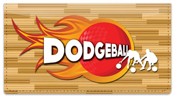 Dodgeball Checkbook Cover