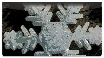 Christmas Snowflake Checkbook Cover