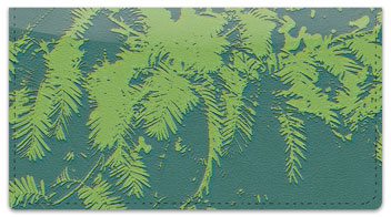 Evergreen Emboss Checkbook Cover