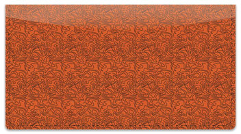Rust Topographic Checkbook Cover