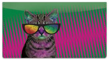 Krazy Kitty Checkbook Cover