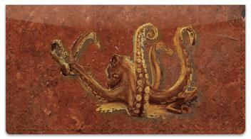 Octopus Checkbook Cover