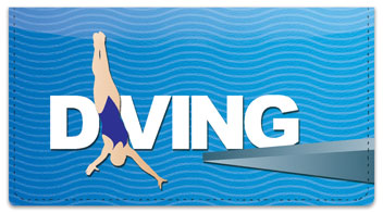 Diving Checkbook Cover