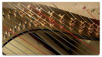 Heavenly Harp Checkbook Cover