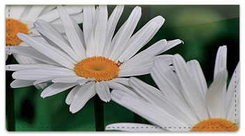 Gerber Daisy Checkbook Cover