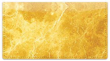 Gold Marble Checkbook Cover