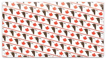 Oh Canada! Checkbook Cover