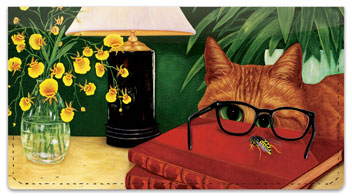 Contemplating Cats 2 Checkbook Cover