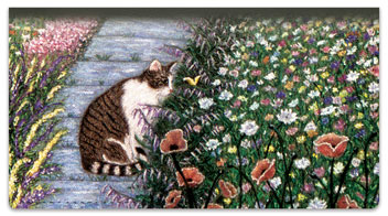 World of Cats 1 Checkbook Cover