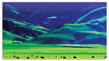 Bulone Landscape Checkbook Covers