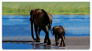 Madaras Safari Checkbook Cover