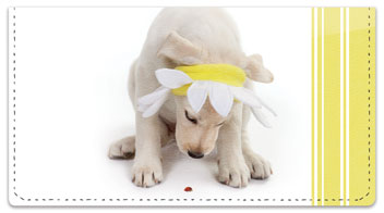 Yellow Lab Pup Checkbook Covers